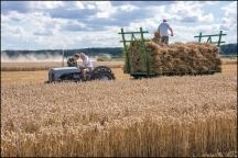 Gallery: Harvest 2017
