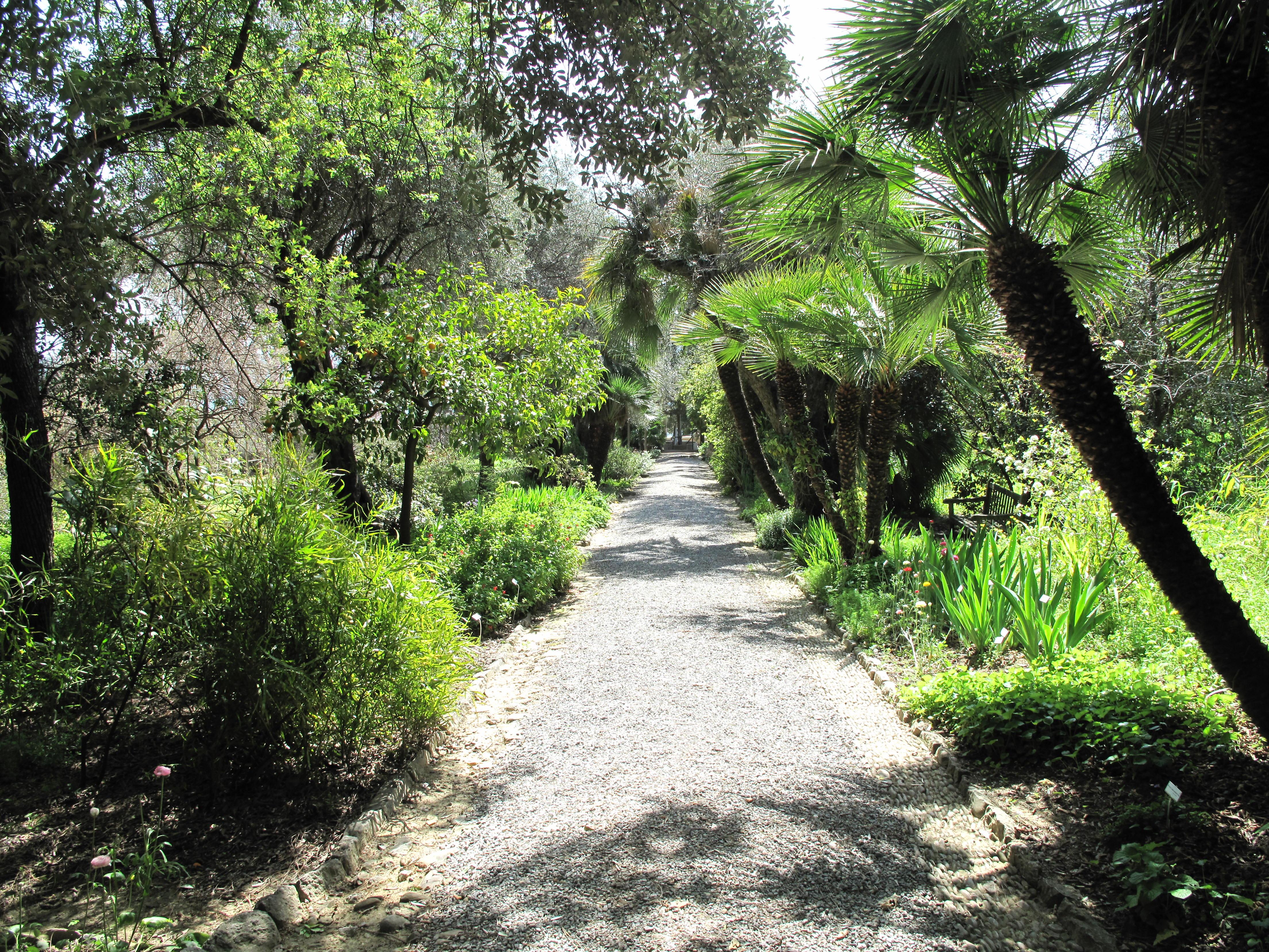 Path_in_the_Hanbury_gardens