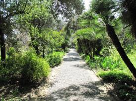 Path_in_the_Hanbury_gardens