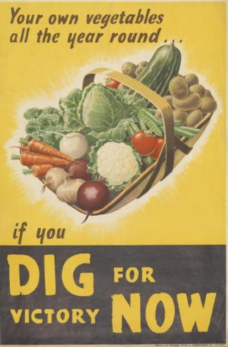 Your Own Vegetables All the Year Round If You Dig For Victory Now Art.IWMPST17009